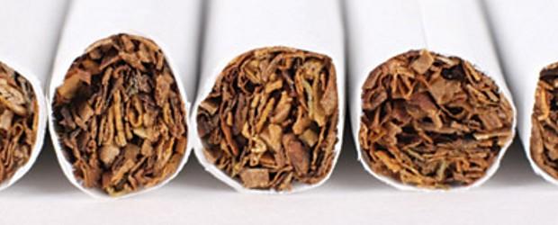 La distribution de tabac et d'articles pour fumeurs est notre spécialité. Nous disposons d'un vaste assortiment de cigarettes, de tabac, de cigares et de cigarillos. En plus des marques nationales et internationales à rotation rapide, vous trouverez également chez nous...